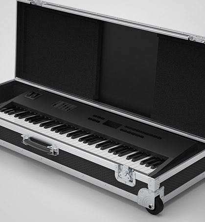 Control Key 88 Keyboard Case